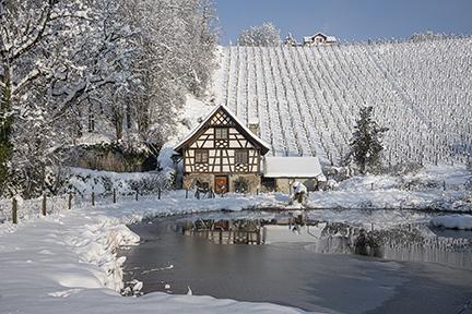 Weiherhaus